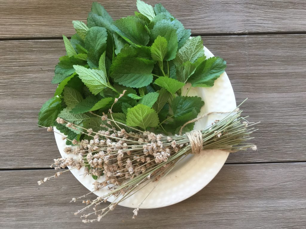 herbs on plate